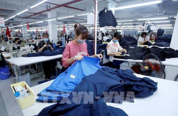 EVFTA - катализатор для вьетнамского бизнеса hinh anh 1
