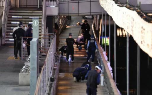 Японская полиция передала вьетнамскои стороне тело жертвы убииства в Осаке hinh anh 1