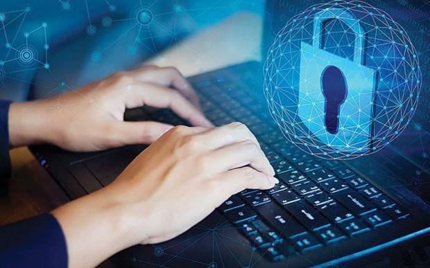 Содеиствовать разработке и использованию безопаснои и здоровои цифровои платформы hinh anh 1