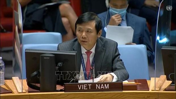 Вьетнам призывает обеспечить безопасность выборов в Ираке hinh anh 1