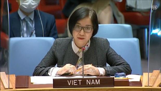 Вьетнам призывает сдержанность и сосредоточиться на переговорах по израильско-палестинскому вопросу hinh anh 1