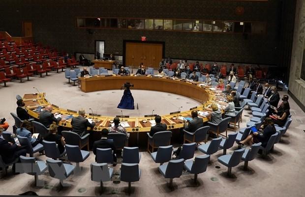 Совет Безопасности завершил августовскую повестку дня hinh anh 1