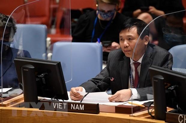 Вьетнам подчеркивает роль международного права в решении глобальных проблем hinh anh 1
