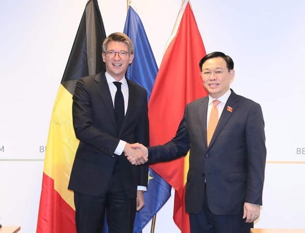 «Визит председателя НС поднимает уровень отношении Вьетнама и ЕС» hinh anh 1