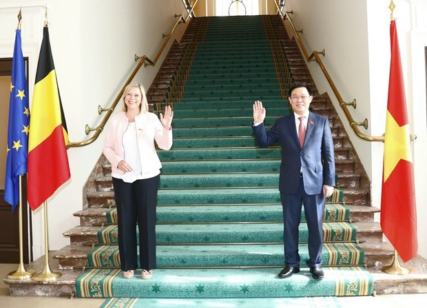 «Визит председателя НС поднимает уровень отношении Вьетнама и ЕС» hinh anh 2
