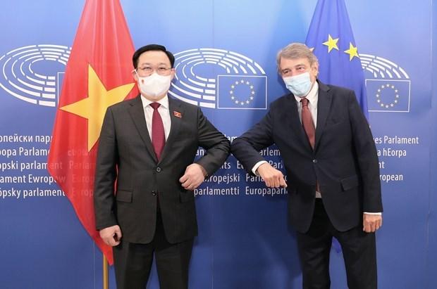 «Визит председателя НС поднимает уровень отношении Вьетнама и ЕС» hinh anh 3