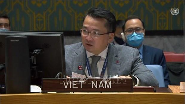 Вьетнам призывает создать Судану благоприятные условия для доступа к финансовым ресурсам hinh anh 1