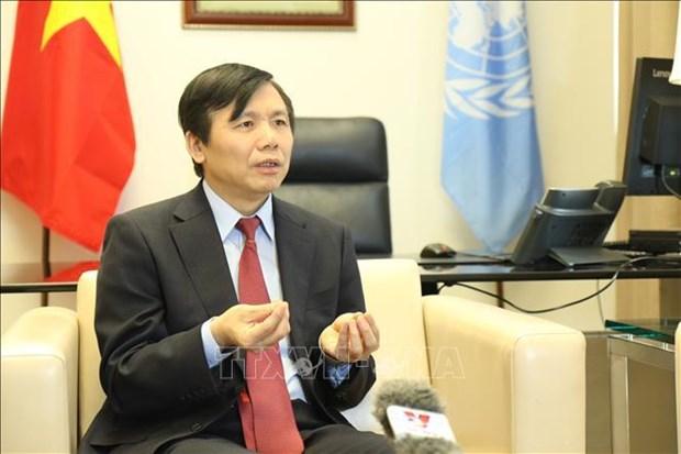 Посол: Участие президента Вьетнама на заседании ГА ООН демонстрирует ответственность в решении глобальных проблем hinh anh 1