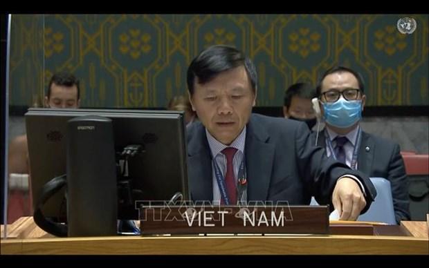 Вьетнам и СБ ООН: устранение коренных причин конфликтов является ключом к построению устоичивого и мирного государства hinh anh 1
