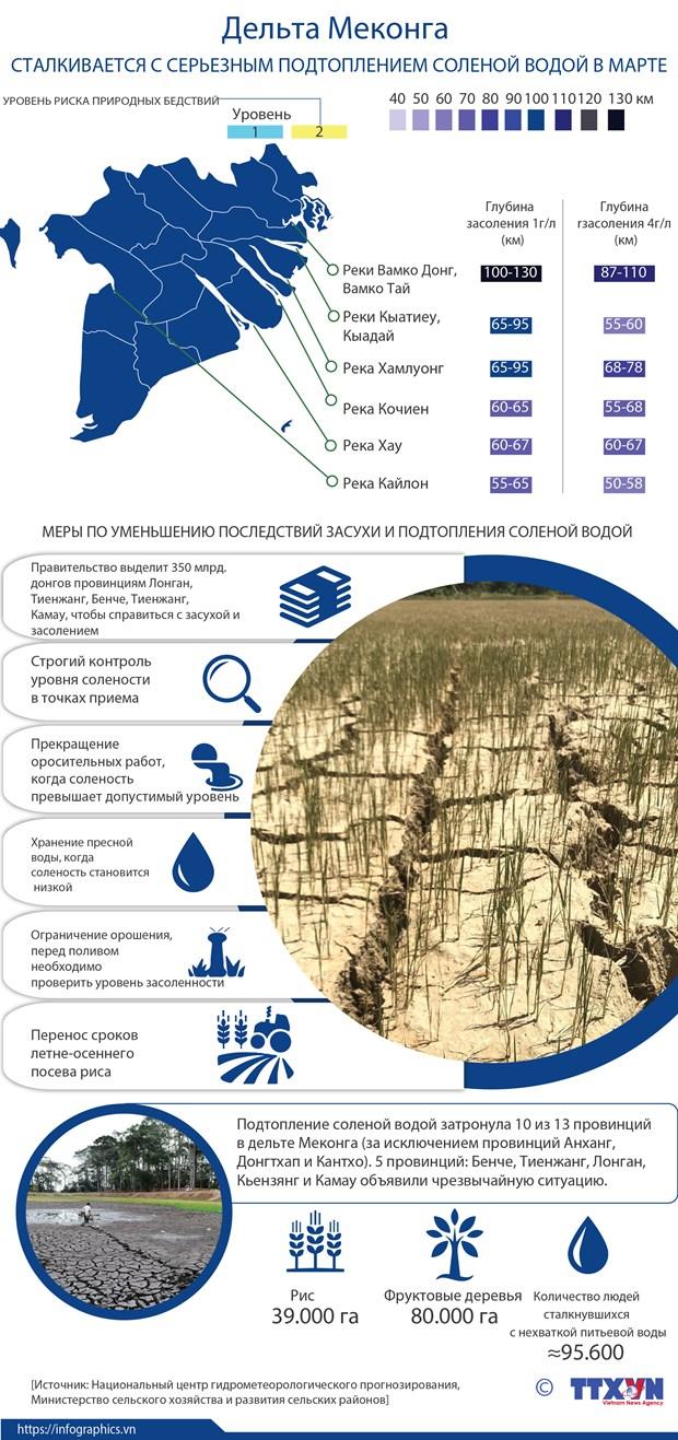 Дельта Меконга сталкивается с серьезным подтоплением соленои водои в марте hinh anh 1