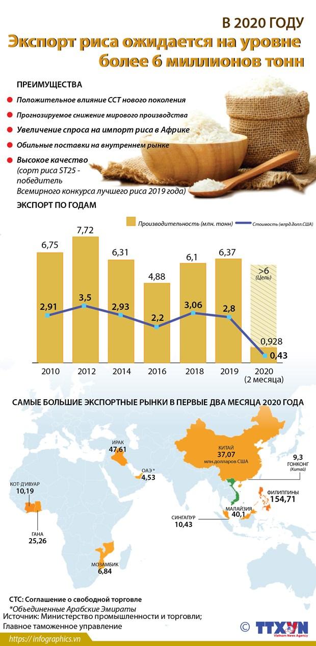 Экспорт риса ожидается на уровне более 6 миллионов тонн hinh anh 1