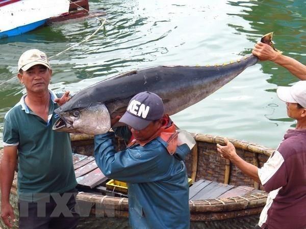 Вьетнамскии экспорт морепродуктов вырос на 8% в прошлом году hinh anh 1