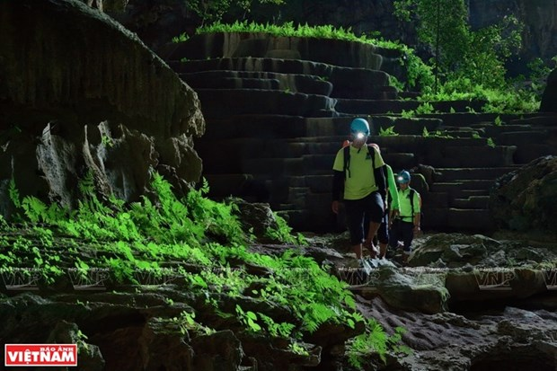 Удивительная пещера Тиен hinh anh 3