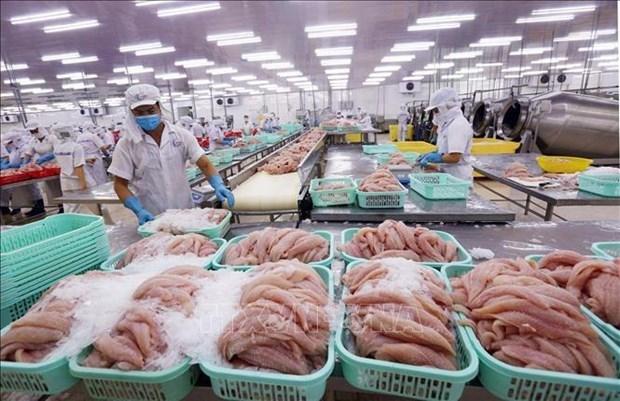 Экспорт воднои продукции Вьетнама в 2021 году достигнет 9 млрд. долл. США hinh anh 1