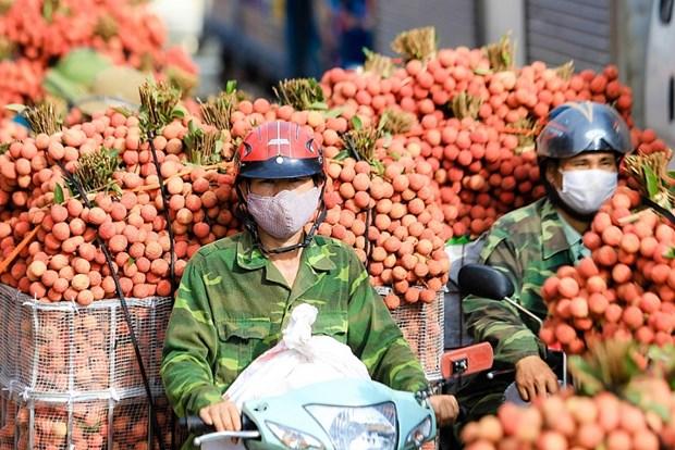 Создавать благоприятные условия для торговых отношении между Вьетнамом и Китаем hinh anh 1