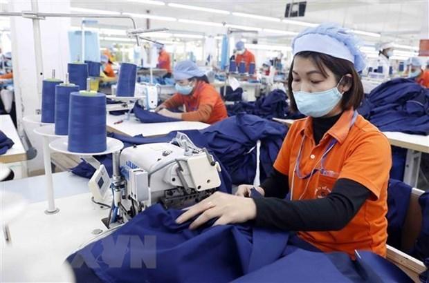 Фирмам посоветовали воспользоваться CPTPP для увеличения экспорта в Мексику hinh anh 1