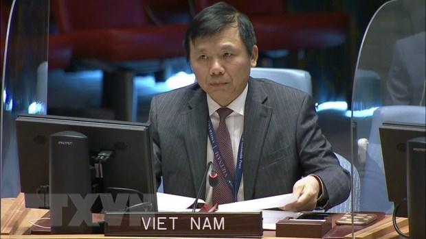 Вьетнам привержен делу укрепления международного мира и безопасности hinh anh 1
